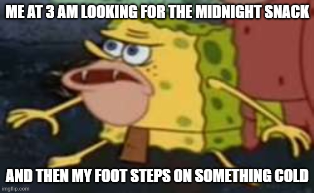Spongegar |  ME AT 3 AM LOOKING FOR THE MIDNIGHT SNACK; AND THEN MY FOOT STEPS ON SOMETHING COLD | image tagged in memes,spongegar | made w/ Imgflip meme maker