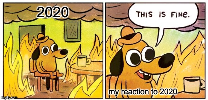 This Is Fine Meme |  2020; my reaction to 2020 | image tagged in memes,this is fine | made w/ Imgflip meme maker