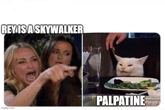 rey star wars |  REY IS A SKYWALKER; PALPATINE | image tagged in woman shouting at cat | made w/ Imgflip meme maker