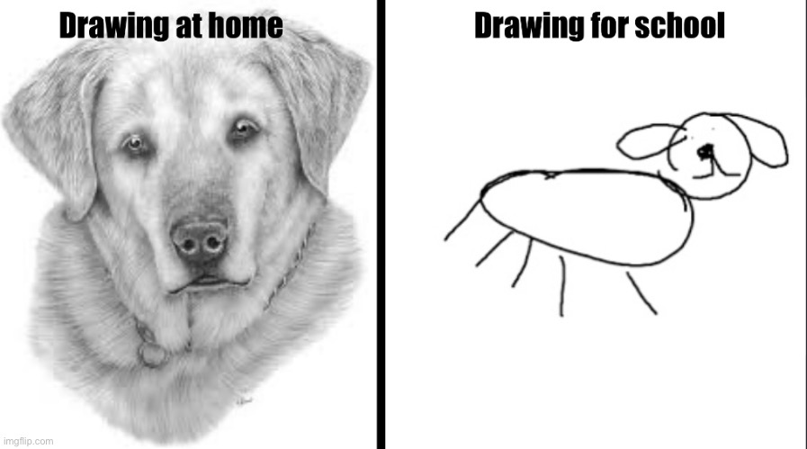Drawing for school vs, drawing at home | image tagged in dogs | made w/ Imgflip meme maker