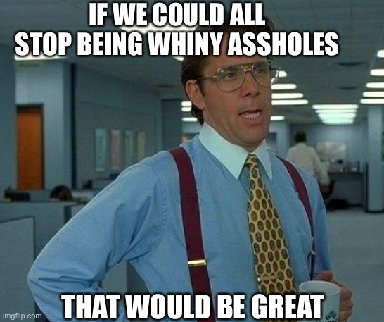 Whiny bitches |  IF WE COULD ALL STOP BEING WHINY ASSHOLES; THAT WOULD BE GREAT | image tagged in memes,that would be great,american politics | made w/ Imgflip meme maker