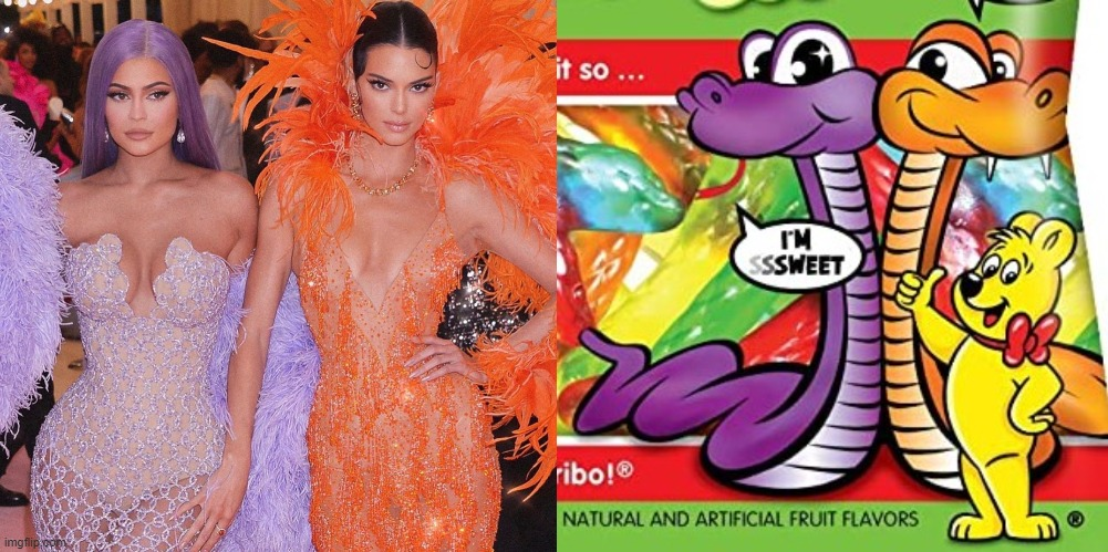 kylie and kim lookin like the hairbo gummy snakes | image tagged in funny,haribo,snakes,kylie jenner,kim kardashian | made w/ Imgflip meme maker