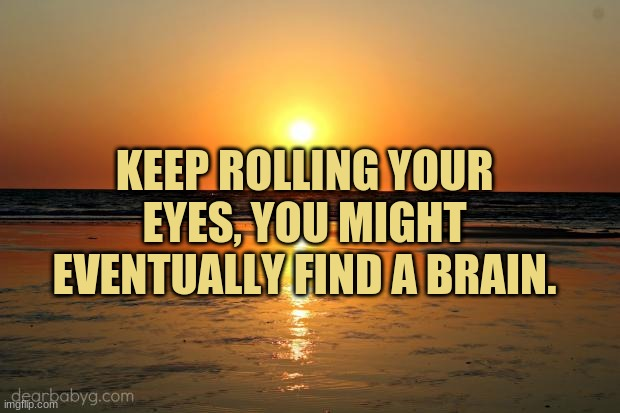 beach sunset |  KEEP ROLLING YOUR EYES, YOU MIGHT EVENTUALLY FIND A BRAIN. | image tagged in beach sunset,insults | made w/ Imgflip meme maker