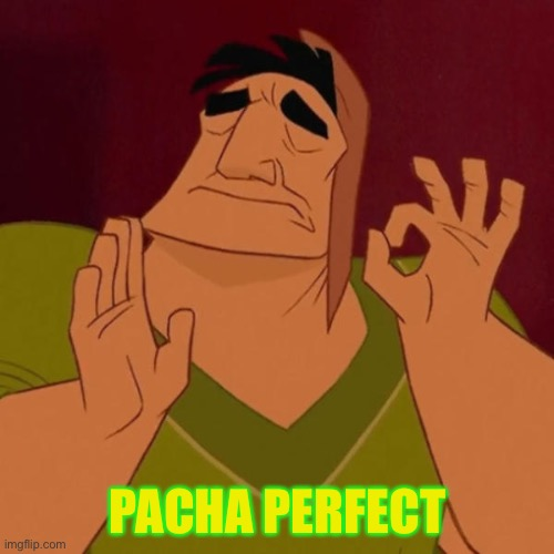 Pacha perfect | PACHA PERFECT | image tagged in pacha perfect | made w/ Imgflip meme maker