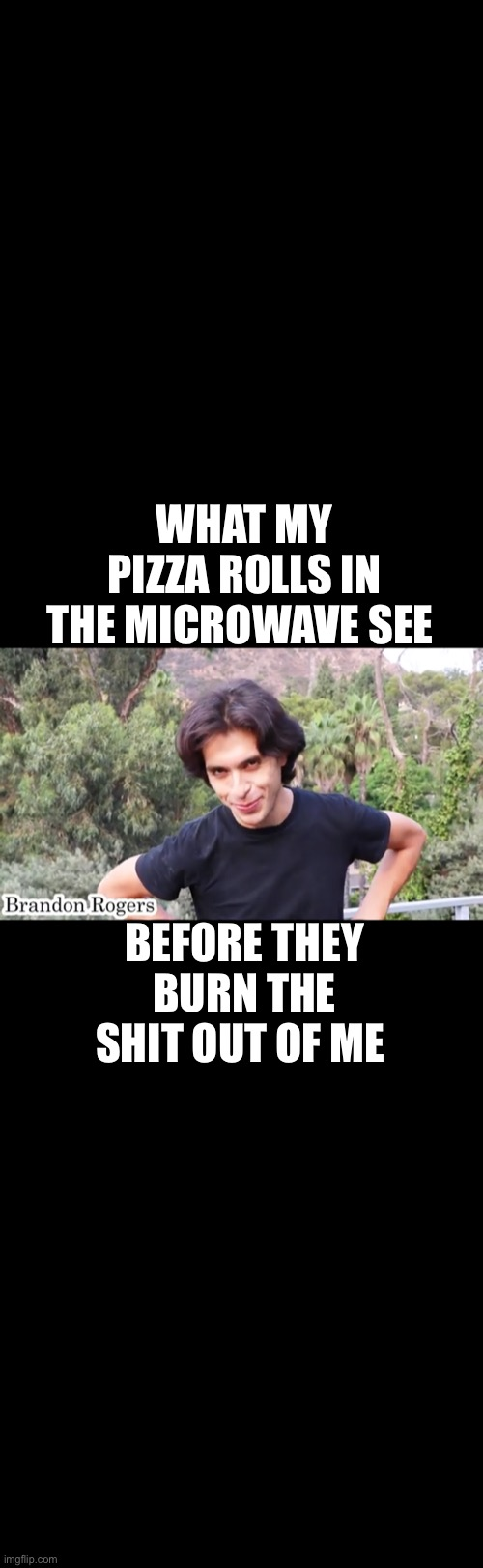 WHAT MY PIZZA ROLLS IN THE MICROWAVE SEE; BEFORE THEY BURN THE SHIT OUT OF ME | image tagged in funny memes,pizza rolls | made w/ Imgflip meme maker