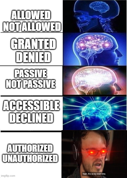 MEME |  ALLOWED  NOT ALLOWED; GRANTED DENIED; PASSIVE NOT PASSIVE; ACCESSIBLE DECLINED; AUTHORIZED UNAUTHORIZED | image tagged in expanding brain,yeah this is big brain time | made w/ Imgflip meme maker