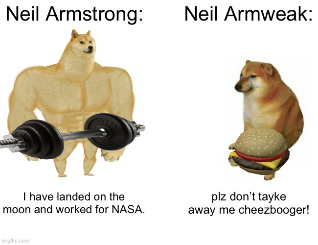 Moun laddering? |  Neil Armstrong:; Neil Armweak:; I have landed on the moon and worked for NASA. plz don't tayke away me cheezbooger! | image tagged in memes,buff doge vs cheems,funny,neil armstrong,i told you,stop reading the tags | made w/ Imgflip meme maker
