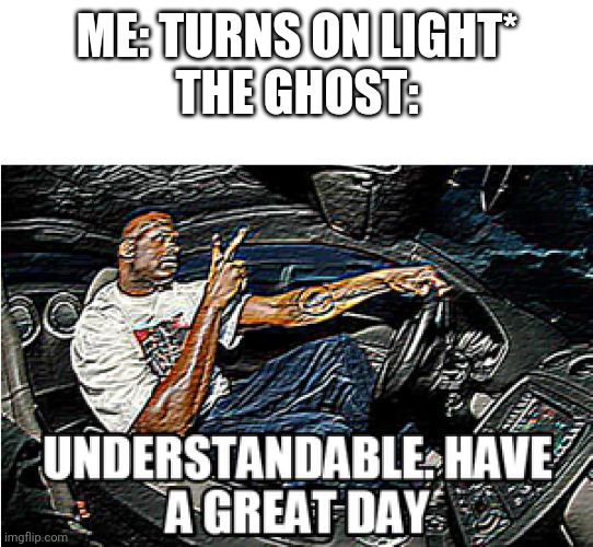UNDERSTANDABLE, HAVE A GREAT DAY |  ME: TURNS ON LIGHT* THE GHOST: | image tagged in understandable have a great day,funny,meme,ghost,hilarious,relatable | made w/ Imgflip meme maker