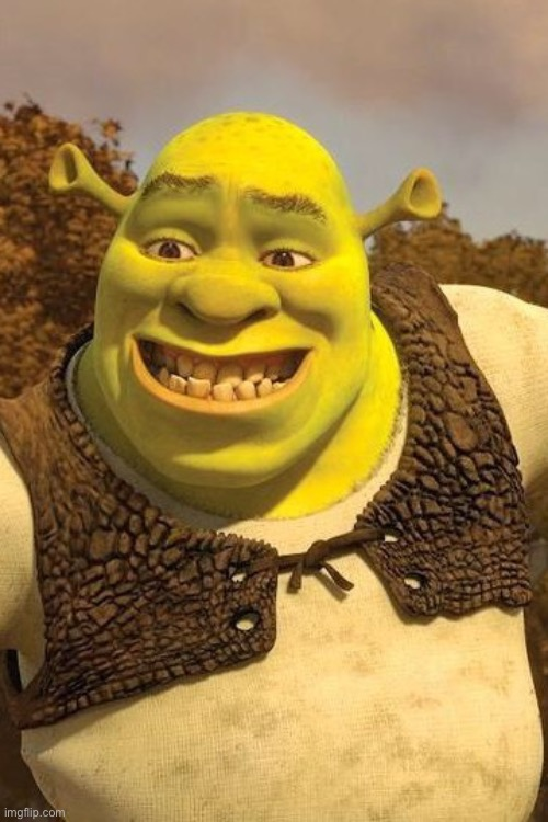 Smiling Shrek | image tagged in smiling shrek | made w/ Imgflip meme maker