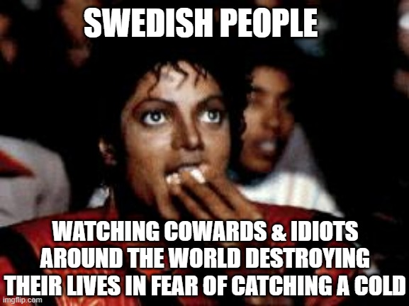 Lockdown Reality |  SWEDISH PEOPLE; WATCHING COWARDS & IDIOTS AROUND THE WORLD DESTROYING THEIR LIVES IN FEAR OF CATCHING A COLD | image tagged in sweden,covid-19,covid19,plandemic,epidemic,pandemic | made w/ Imgflip meme maker