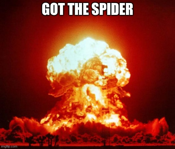 Nuke |  GOT THE SPIDER | image tagged in nuke | made w/ Imgflip meme maker