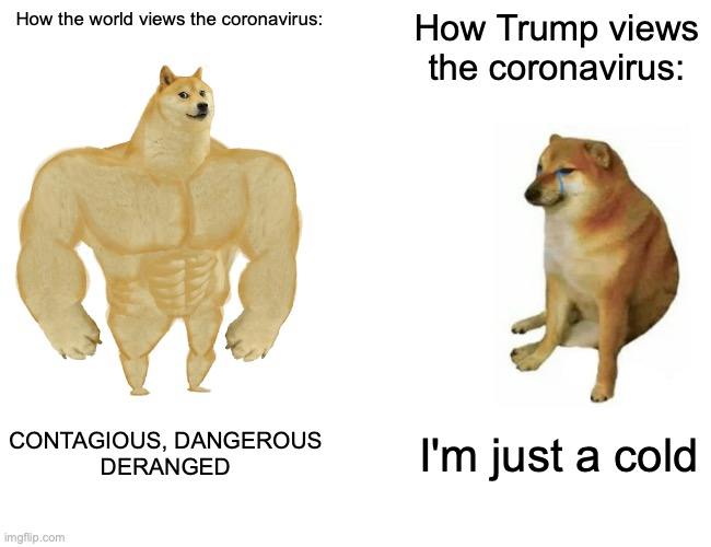 TRUMP |  How the world views the coronavirus:; How Trump views the coronavirus:; CONTAGIOUS, DANGEROUS DERANGED; I'm just a cold | image tagged in memes,buff doge vs cheems,coronavirus,trump | made w/ Imgflip meme maker