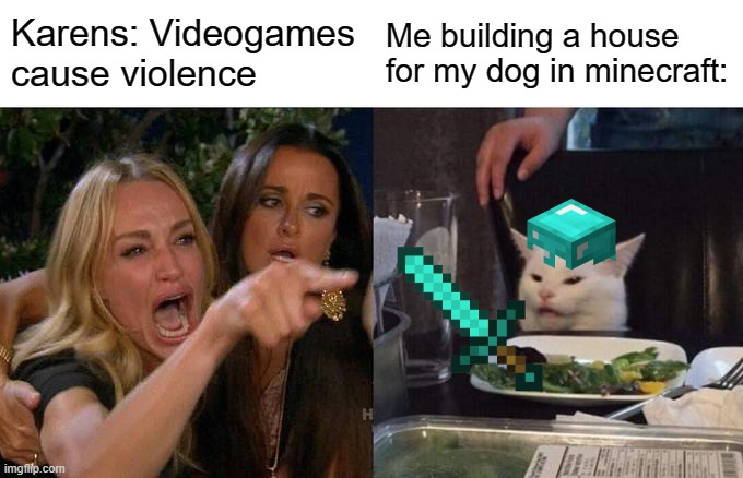 Minecraft |  Karens: Videogames cause violence; Me building a house for my dog in minecraft: | image tagged in memes,woman yelling at cat,minecraft,karens | made w/ Imgflip meme maker