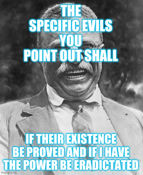 Teddy Roosevelt |  THE SPECIFIC EVILS YOU POINT OUT SHALL; IF THEIR EXISTENCE BE PROVED AND IF I HAVE THE POWER BE ERADICTATED | image tagged in teddy roosevelt | made w/ Imgflip meme maker