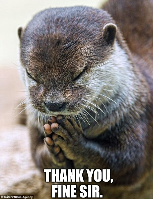 Thank you Lord Otter | THANK YOU, FINE SIR. | image tagged in thank you lord otter | made w/ Imgflip meme maker