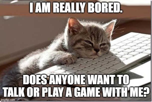 Bored Keyboard Cat |  I AM REALLY BORED. DOES ANYONE WANT TO TALK OR PLAY A GAME WITH ME? | image tagged in bored keyboard cat | made w/ Imgflip meme maker