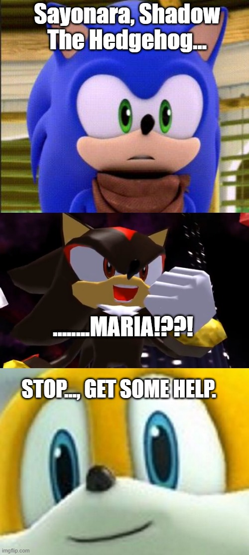 Sayonara, Shadow The Hedgehog... ........MARIA!??! STOP..., GET SOME HELP. | image tagged in surprised sonic | made w/ Imgflip meme maker