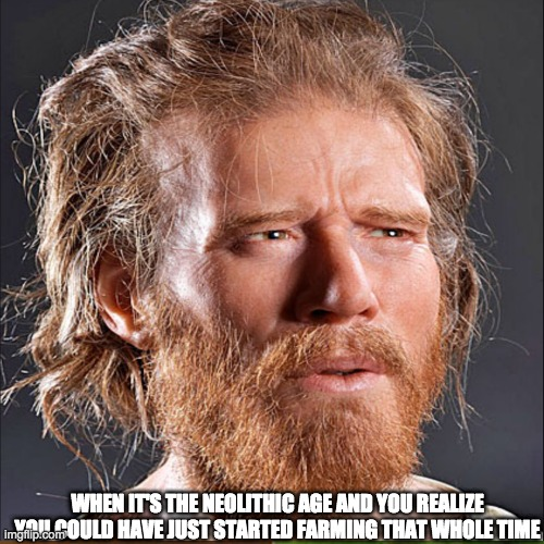 Neolithic age Farm Meme |  WHEN IT'S THE NEOLITHIC AGE AND YOU REALIZE YOU COULD HAVE JUST STARTED FARMING THAT WHOLE TIME | image tagged in funny memes | made w/ Imgflip meme maker