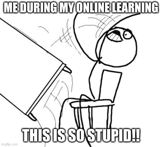 Table Flip Guy |  ME DURING MY ONLINE LEARNING; THIS IS SO STUPID!! | image tagged in memes,table flip guy | made w/ Imgflip meme maker