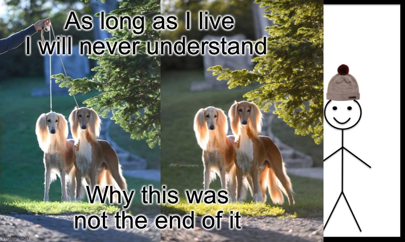 As long as I live I will never understand; Why this was not the end of it | image tagged in memes,be like bill | made w/ Imgflip meme maker