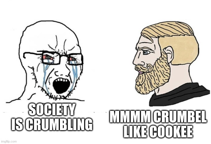 mmmm crumbel like cookee |  SOCIETY IS CRUMBLING; MMMM CRUMBEL LIKE COOKEE | image tagged in soyboy vs yes chad,society,we live in a society,reddit,redditor | made w/ Imgflip meme maker