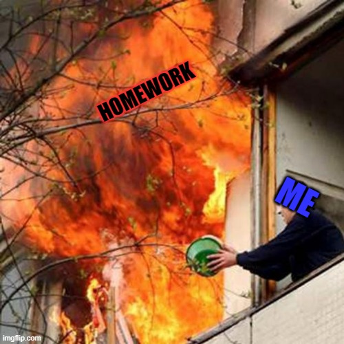 fire idiot bucket water |  HOMEWORK; ME | image tagged in fire idiot bucket water | made w/ Imgflip meme maker