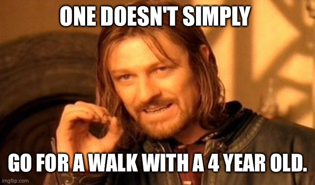 Walking with children |  ONE DOESN'T SIMPLY; GO FOR A WALK WITH A 4 YEAR OLD. | image tagged in memes,one does not simply,kids,walking | made w/ Imgflip meme maker