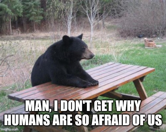 Friendly Bear Just Wants To Be Friends With Humans |  MAN, I DON'T GET WHY HUMANS ARE SO AFRAID OF US | image tagged in memes,bad luck bear,lonely bear,sad bear | made w/ Imgflip meme maker