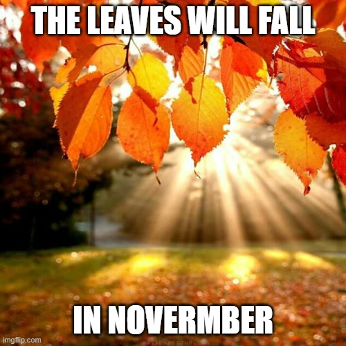 Not Yet For Autumn |  THE LEAVES WILL FALL; IN NOVERMBER | image tagged in fall leaves,not yet,season,true | made w/ Imgflip meme maker