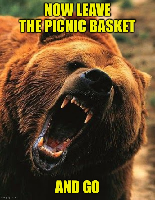 NOW LEAVE THE PICNIC BASKET AND GO | made w/ Imgflip meme maker