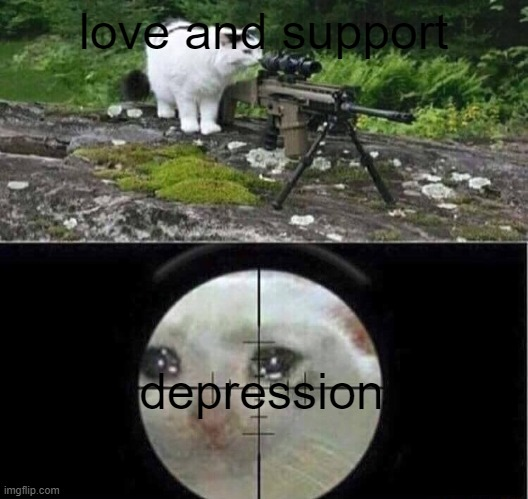 wholesome? |  love and support; depression | image tagged in sniper cat,wholesome,memes | made w/ Imgflip meme maker