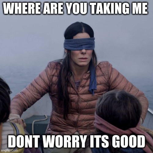 Bird Box Meme |  WHERE ARE YOU TAKING ME; DONT WORRY ITS GOOD | image tagged in memes,bird box | made w/ Imgflip meme maker