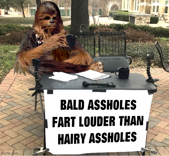 image tagged in star wars,chewbacca,farts,assholes,hairy,bald | made w/ Imgflip meme maker