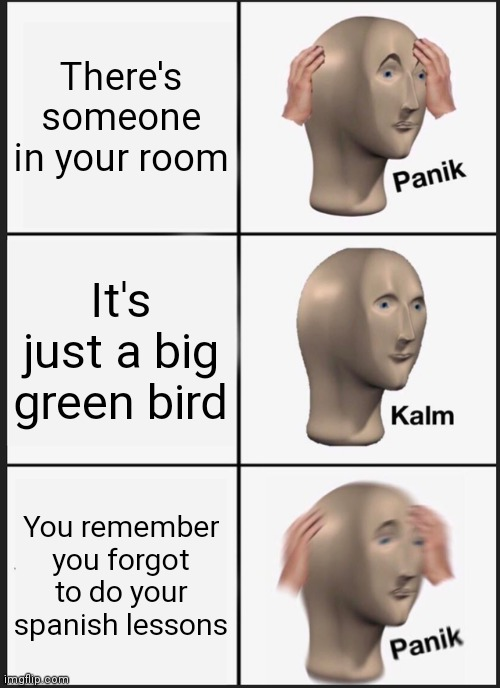 The dead memes meme |  There's someone in your room; It's just a big green bird; You remember you forgot to do your spanish lessons | image tagged in memes,panik kalm panik,duolingo bird,spanish,meme man | made w/ Imgflip meme maker