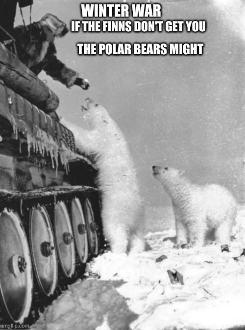 the winter War |  WINTER WAR; IF THE FINNS DON'T GET YOU; THE POLAR BEARS MIGHT | image tagged in warriors | made w/ Imgflip meme maker