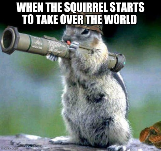 squirrels now have the power |  WHEN THE SQUIRREL STARTS TO TAKE OVER THE WORLD | image tagged in memes,bazooka squirrel | made w/ Imgflip meme maker