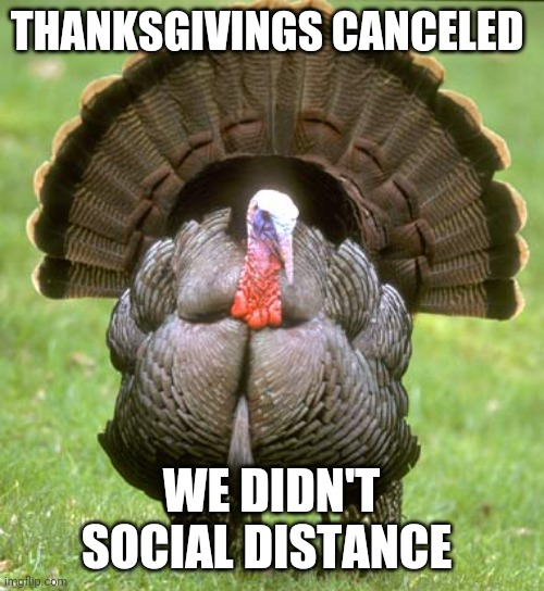 Canceled Thanksgiving |  THANKSGIVINGS CANCELED; WE DIDN'T SOCIAL DISTANCE | image tagged in memes,turkey | made w/ Imgflip meme maker