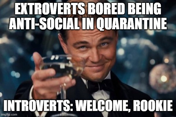 Leonardo Dicaprio Cheers Meme |  EXTROVERTS BORED BEING ANTI-SOCIAL IN QUARANTINE; INTROVERTS: WELCOME, ROOKIE | image tagged in memes,leonardo dicaprio cheers | made w/ Imgflip meme maker