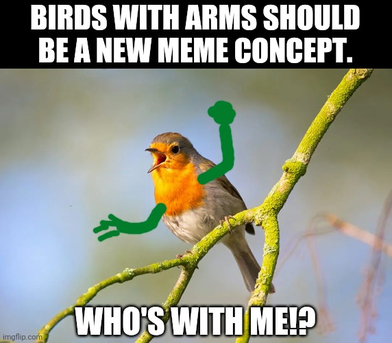 call to arms! |  BIRDS WITH ARMS SHOULD BE A NEW MEME CONCEPT. WHO'S WITH ME!? | image tagged in birds,stick figure,arms | made w/ Imgflip meme maker