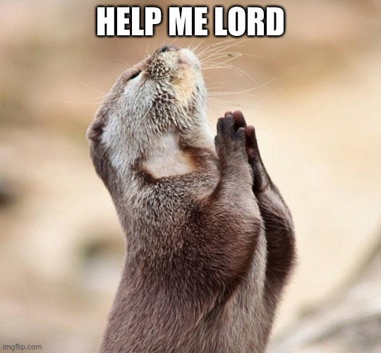 animal praying |  HELP ME LORD | image tagged in animal praying | made w/ Imgflip meme maker