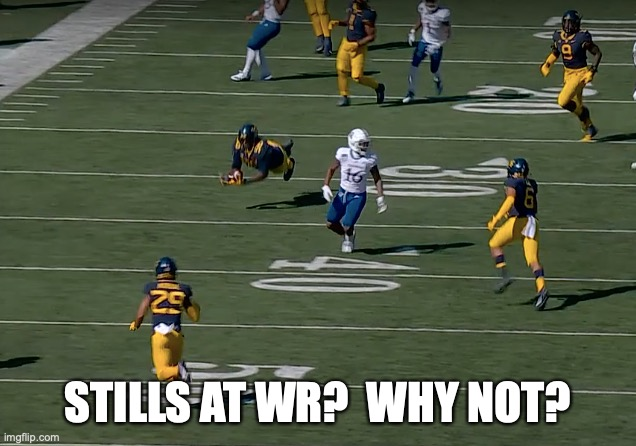 Stills pick |  STILLS AT WR?  WHY NOT? | image tagged in wvu | made w/ Imgflip meme maker