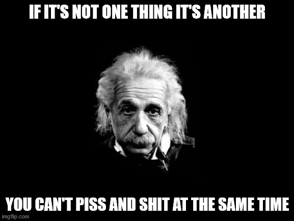 Albert Einstein 1 |  IF IT'S NOT ONE THING IT'S ANOTHER; YOU CAN'T PISS AND SHIT AT THE SAME TIME | image tagged in memes,albert einstein 1 | made w/ Imgflip meme maker