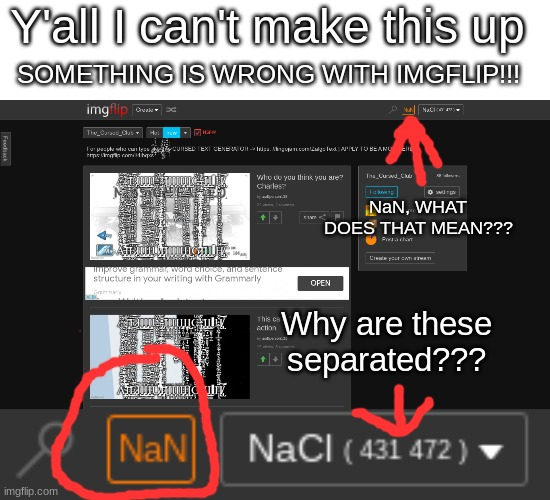 Y'all I can't make this up; SOMETHING IS WRONG WITH IMGFLIP!!! NaN, WHAT DOES THAT MEAN??? Why are these separated??? | image tagged in nan,imgflip,broken,what is going on,is it a bug | made w/ Imgflip meme maker