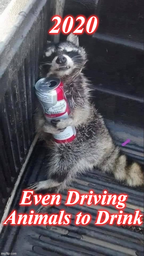 2020; Even Driving Animals to Drink | image tagged in 2020 | made w/ Imgflip meme maker