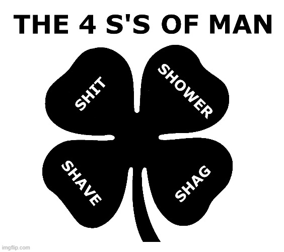 The 4 S's Of Man |  TRM; TRM | image tagged in shit,shower,shave,shag,the 4 s's of man | made w/ Imgflip meme maker