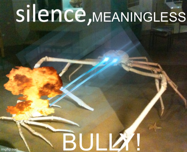 Silence Crab |  MEANINGLESS; BULLY! | image tagged in silence crab | made w/ Imgflip meme maker