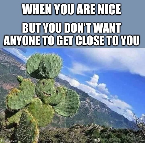 Stay back.  I will hurt you. |  WHEN YOU ARE NICE; BUT YOU DON'T WANT ANYONE TO GET CLOSE TO YOU | image tagged in happy cactus,nice,stay away,get back,stop,memes | made w/ Imgflip meme maker