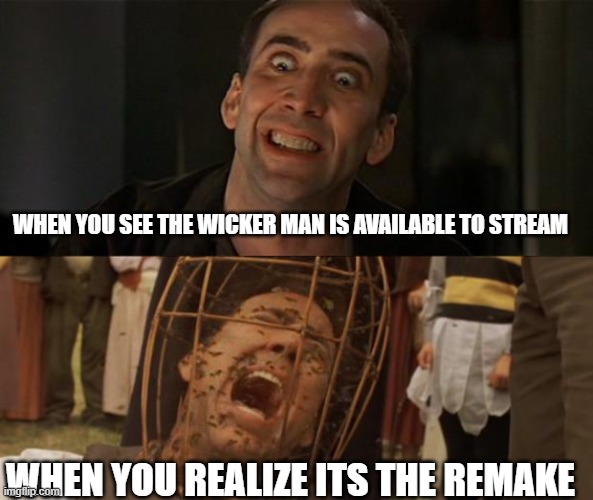 WHEN YOU SEE THE WICKER MAN IS AVAILABLE TO STREAM; WHEN YOU REALIZE ITS THE REMAKE | image tagged in not the bees,nicholas cage crazy eyes | made w/ Imgflip meme maker