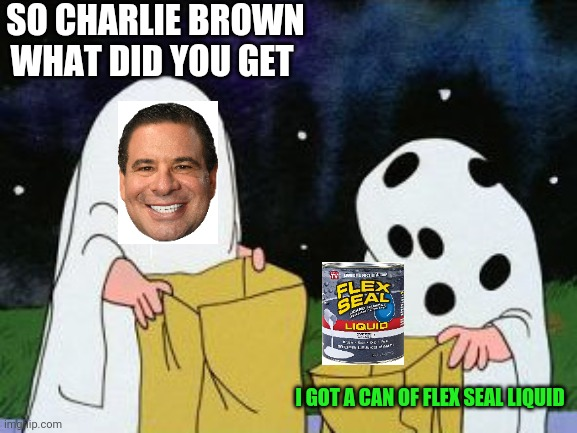 I got a rock |  SO CHARLIE BROWN WHAT DID YOU GET; I GOT A CAN OF FLEX SEAL LIQUID | image tagged in i got a rock | made w/ Imgflip meme maker