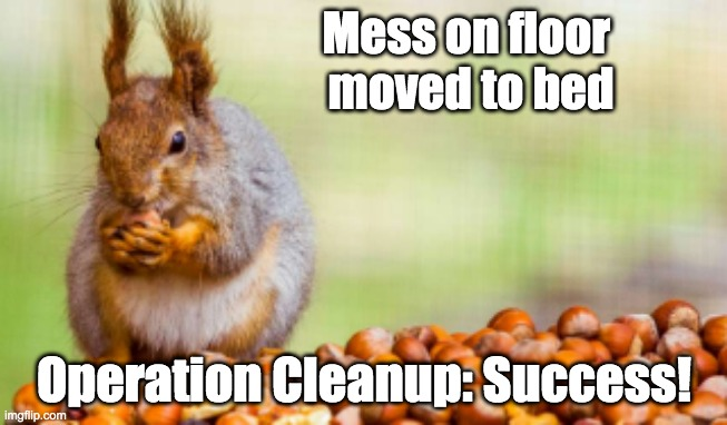 Winning a pile |  Mess on floor  moved to bed; Operation Cleanup: Success! | image tagged in made a pile,mess,squirrel | made w/ Imgflip meme maker